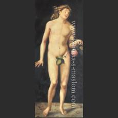Адам и Ева. Адам — Дюрер, Альбрехт