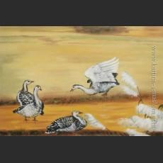 Гуси — лебеди